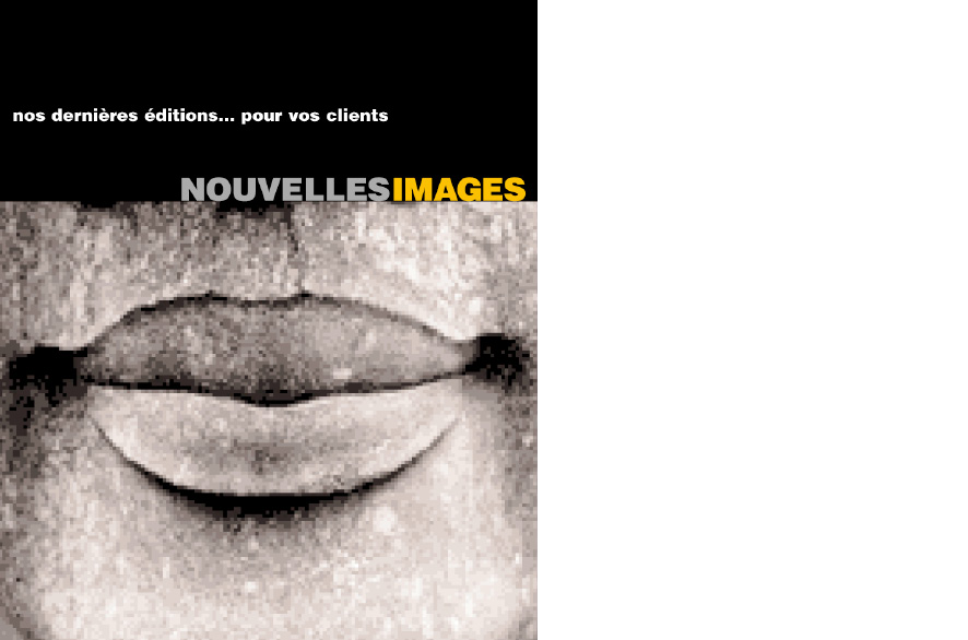 pippo lionni - nouvelles images - ldesign - identite - identity