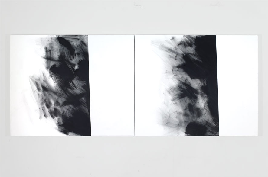 pippo lionni - GRAYMATTERS 23, 2010, Acrylic on canvas, diptych, 80x200cm