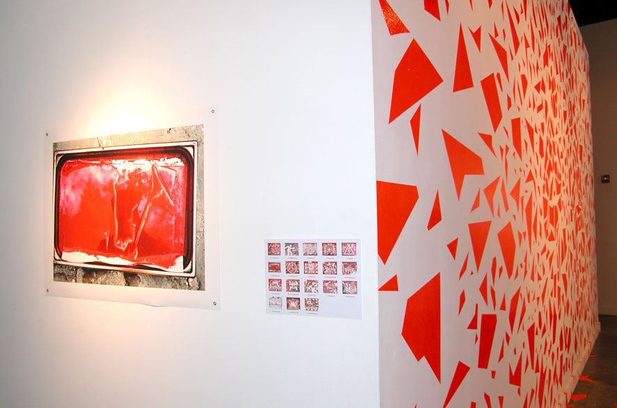 pippo lionni - exhibition - expo - pnca - survival of the fittest